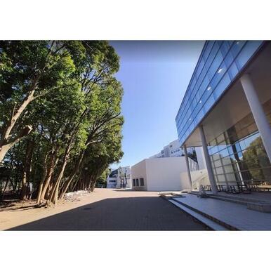 横浜国立大学附属図書館