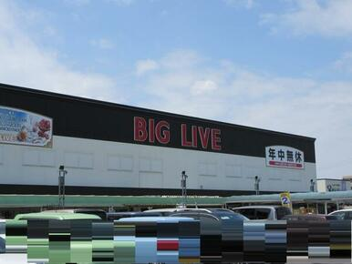 BIGLIVE小牧店