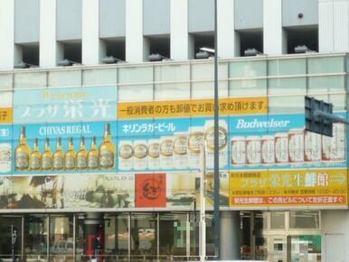 プラザ栄光本店
