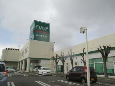 COOP MIYAGI(みやぎ生協) 大代店