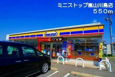 ミニストップ 嵐山川島店