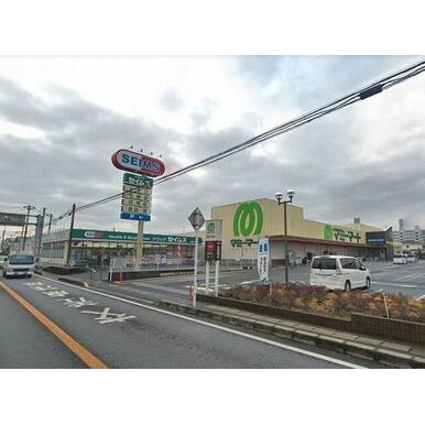 ◆周辺施設◆ ドラッグストアのセイムス根戸店まで徒歩4分(290m)♪