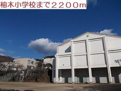 柚木小学校