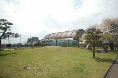 入間市運動公園