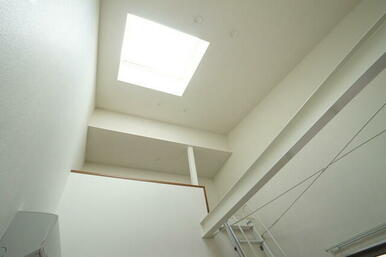 101号室のLDKは天井吹抜け。鉄骨の梁・ブレースがむき出しにされ空間を御洒落に演出します。天窓が有