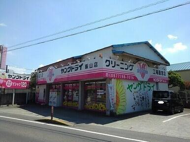 ヤングドライ飯山店