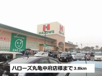 ハローズ丸亀中府店様