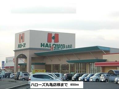 ハローズ丸亀店
