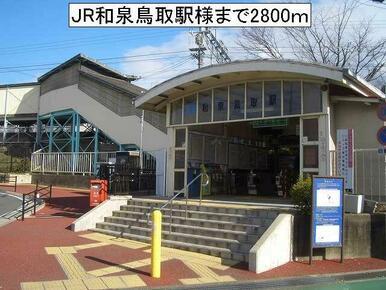 IR和泉鳥取駅様