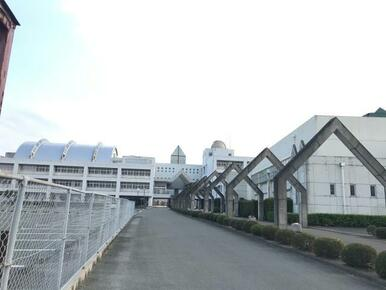 石井町立石井中学校