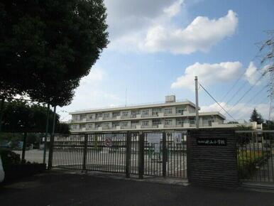 嶮山小学校