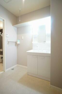 洗面スペースには大きなサイズのシャンプードレッサー付き♪上部には何かと便利なホスクリーンも付いており