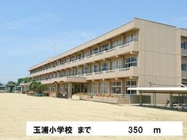 玉浦小学校